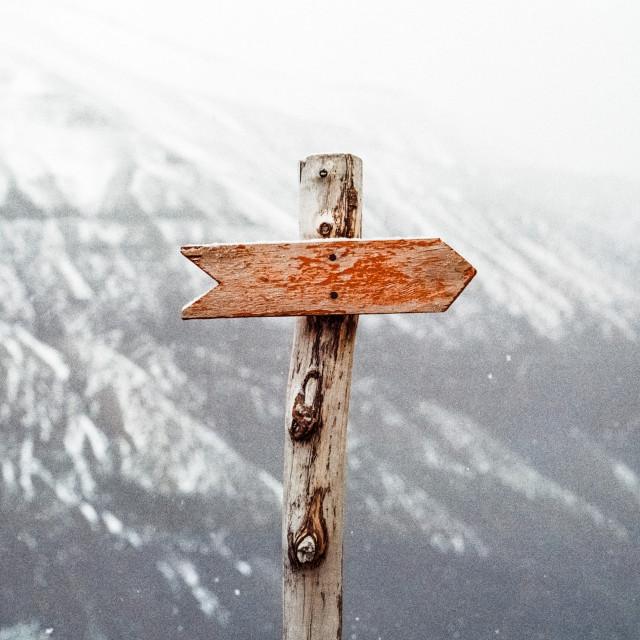 Le guide de l'employeur, l'outil indispensable pour engager un collaborateur